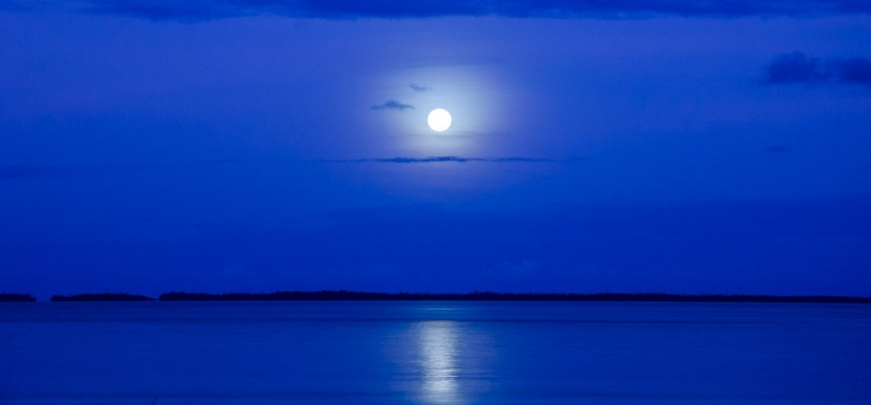 Blue Moon Dreaming