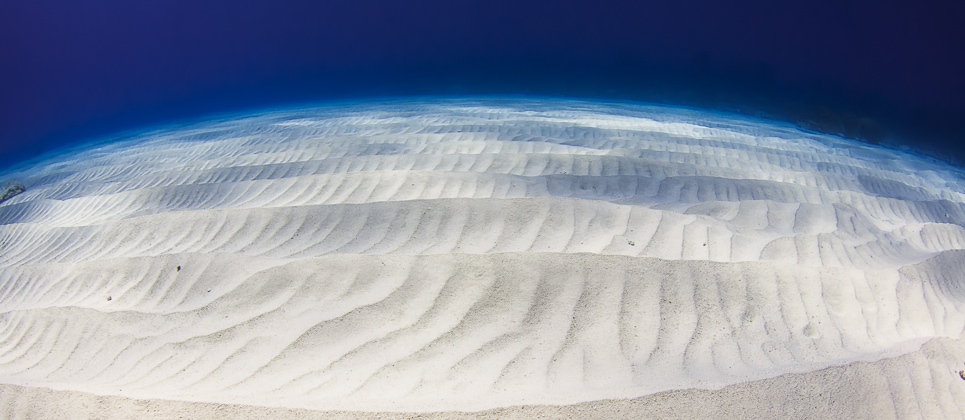 contours and shadows in the sand