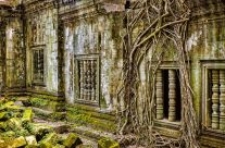 Beng Mealea; Lost in the Khmer Jungle II _7KW9235-1